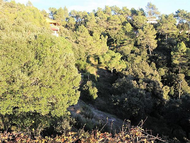Terreno urbanizable en Vacarisses #3